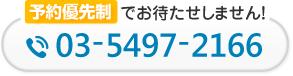 電話番号:03-5497-2166